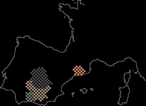 ros-mapa